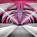 Peace Bridge by Cory Huchkowski
