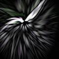 Peace Dove by Lauren Radke