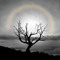 Peace Faith Hope Rainbow by Linda Weyers