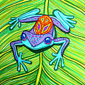 Peace Frog On A Leaf by Nick Gustafson
