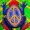 Peace Frog Too by Nick Gustafson