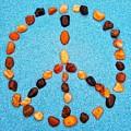 Peace Sign by Rachel Hannah