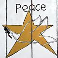 Peace Star by Munir Alawi