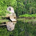 Peaceful Cabin by Desiree Schmidt
