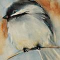 Peaceful Chickadee by Jani Freimann