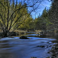 Peaceful Flowing Plover River by Dale Kauzlaric