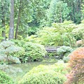 Peaceful Garden Space by Merle Grenz