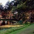 Peaceful Lakeside Park Scene H B by Gert J Rheeders