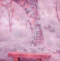 Peaceful Rest-1 by Joye Ardyn Durham