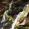 Peaceful Waterfall by Jeelan Clark