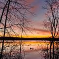 Peaceful Easy Feeling by Bill Wakeley
