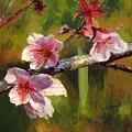 Peach Blossom Time by Lea Novak