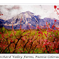 Peach Blossoms And Mount Lamborn Orchard Valley Farms by Anastasia Savage Ealy