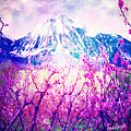 Peach Blossoms And Mount Lanborn Vi by Anastasia Savage Ealy