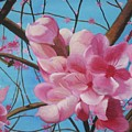 Peach Blossoms by Rebecca Jackson