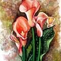 Peach Callas by Karin  Dawn Kelshall- Best