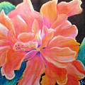 Peach Double Hibiscus by Susan Kubes