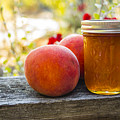 Peach Jelly by John Trax