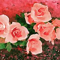 Peach Roses by Jamie Holbrook