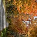 Peacham Side Road by George Scheller