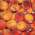 Peaches by Lauri Novak