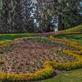 Peacock Garden by Eti Reid