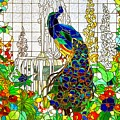 Peacock Stained Glass by Marianne Dow