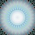Peacock by Vicki Lynn Sodora