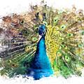 Peacock Watercolor Painting by Justyna JBJart