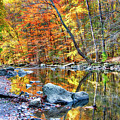 Peak Fall Foliage At The Black River by George Oze