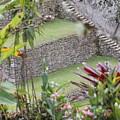 Peeking In At Machu Picchu by Brandy Little