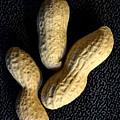 Peanuts  by Angelika Heidemann