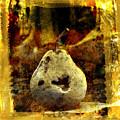 Pear by Bernard Jaubert