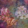 Pear Blossom Morning Impression 8941 Idp_2 by Steven Ward