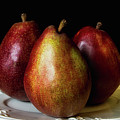 Pear Trio Still Life by Lindley Johnson