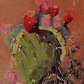 Peared Up by Barbara Andolsek