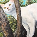 Pearl Up A Tree by Diane Donati