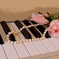 Pearly Pink Keys by Florene Welebny