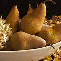 Pears And Hydrangea Still Life  by Sandra Foster