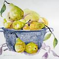 Pears by Lisa Schorr
