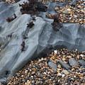 Pebble Beach Rocks 8715 by Bob Neiman
