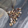 Pebble Beach Rocks 8778 by Bob Neiman