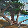 Pebble Beach by Stanton D Allaben