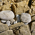 Pebble Pocket Photo by Peter J Sucy