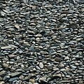 Pebbles On The Beach by Gene Sizemore