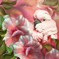 Peek A Boo Cockatoo by Carol Cavalaris