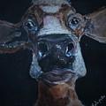 Peekaboo Moo by Satu Pirinen