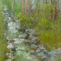 Peekskill Hollow Creek by Kathleen Hoekstra