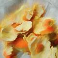 Peeled Orange Composition 1 by Lynda Lehmann
