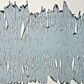 Peeling Paint 2 by Michelle Joseph-Long